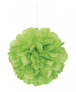 Lime Green Mini Puff Tissue...